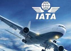 Aviasiya normal hərəkətini 2024-cü ilin ikinci yarısınadək bərpa edəcək - IATA