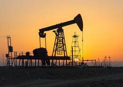 """""""Brent"""" markalı neftin qiyməti 67 dollardan aşağı düşdü"""
