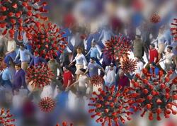 Dünyaya çağırış: növbəti pandemiyaya hazırlaşın