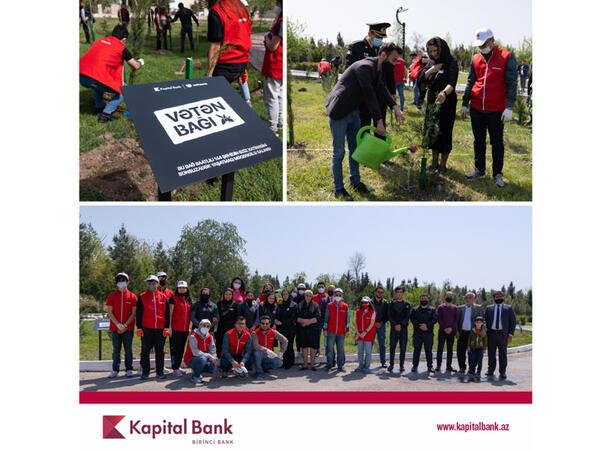 """Kapital Bank və """"Qırmızı Ürəklər"""" şəhidlərin xatirəsinə ağac əkdilər"""