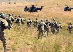 Türkiyə ordusu ilin əvvəlindən 836 terrorçunu zərərsizləşdirib