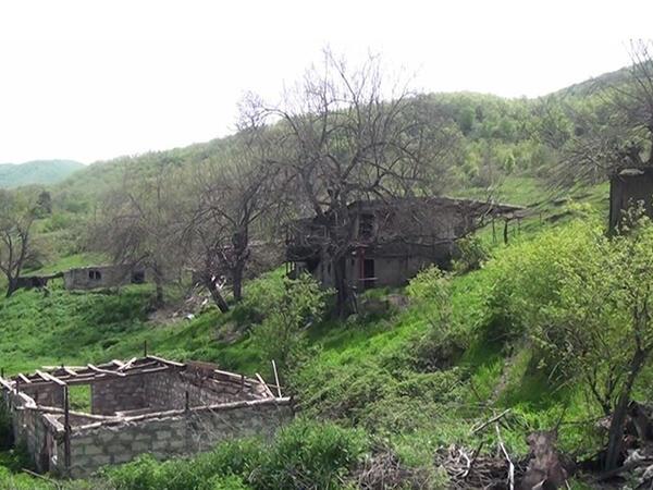 Nəcəflər kəndi 28 illik işğaldan sonra belə görünür - VİDEO