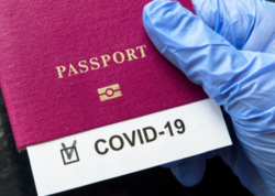 Yaponiya bu yay vaksinasiya pasportları verməyə başlayacaq