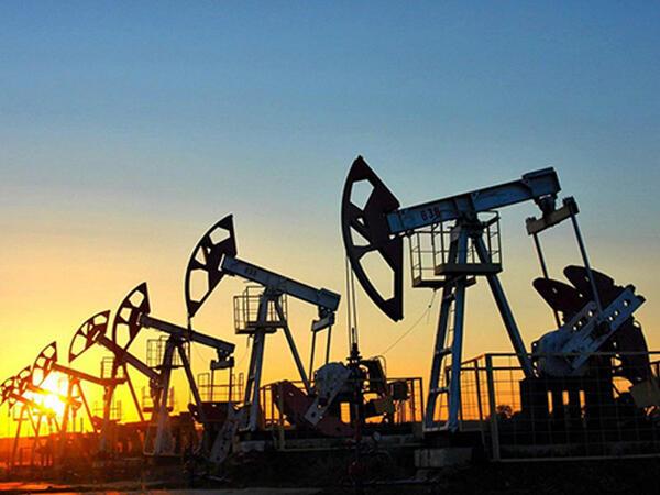 Azərbaycanın bu il neft ixracı 12 milyon tona çatır