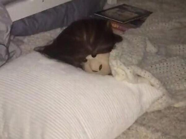 Onsuz yata bilməyən uşağını qeyri-adi yolla yatızdırıb məşhurlaşdı - FOTO