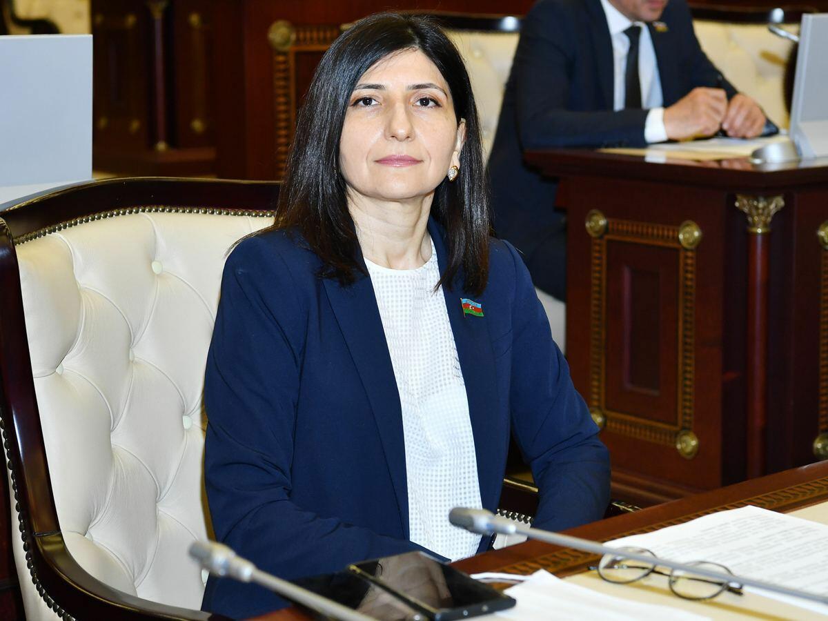 Azərbaycan Ordusu torpaqlaımızı işğaldan azad etməklə tarixi missiyasını şərəflə yerinə yetirdi - Sevil Mikayılova