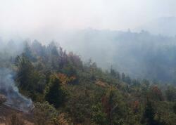 Xocavənddə minalanmış ərazidəki yanğın söndürüldü - VİDEO