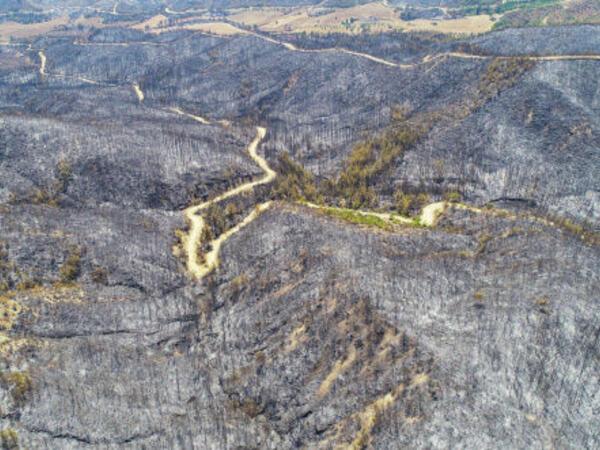 Türkiyədə yanan meşələrin dronla çəkilmiş FOTOları