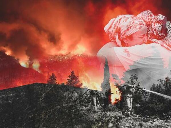 Türkiyədə 180 meşə yanğınının qarşısı alındı
