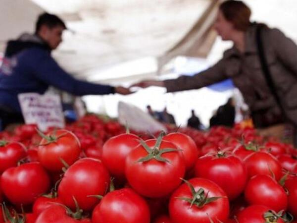 """Pomidor nə üçün kəskin bahalaşıb? - <span class=""""color_red"""">VİDEO</span>"""