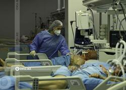 COVID-19 pandemiyası ömrün azalmasına səbəb olub