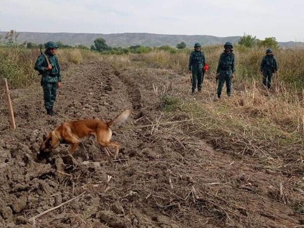 Azərbaycan-İran sərhədinin azad olunan hissəsində aşkarlanan minaların sayı açıqlandı - FOTO